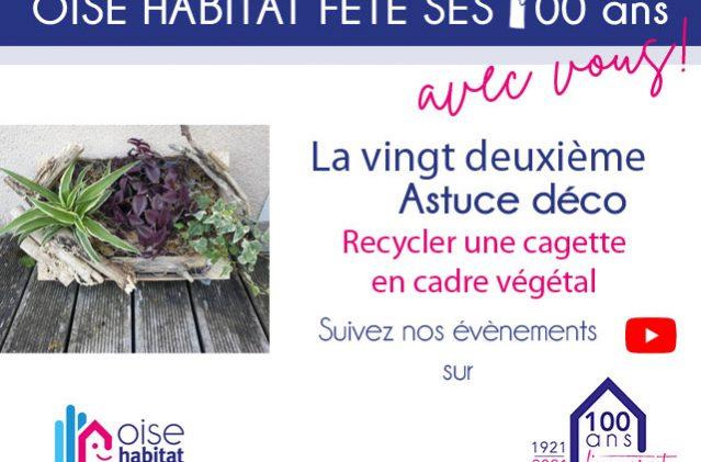 Une nouvelle astuce : recycler une cagette en cadre végétal